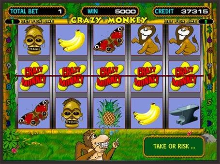 Максимальная выигрышная комбинация в автомате Crazy Monkey