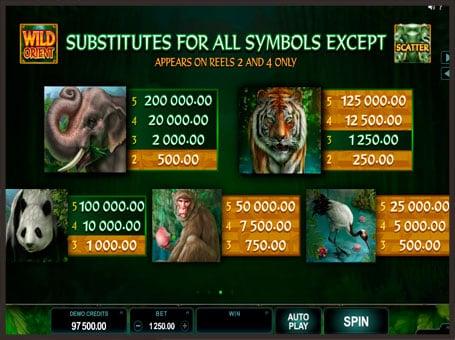 Выплаты и символы игрового автомата Wild Orient